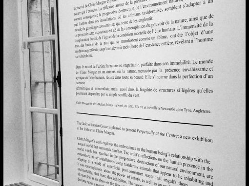 La galerie Karsten Greve; Paris, Cologne